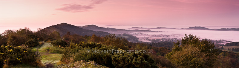 Pink Sunrise - Malvern Hills from Wyche Cutting