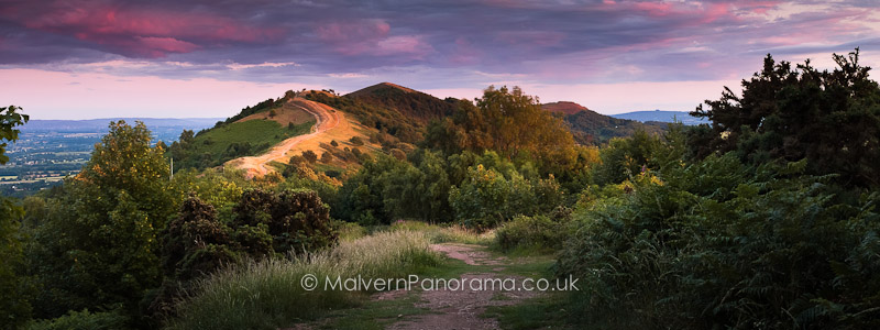 Shepards Delight - Wyche Cutting, Malvern Hills